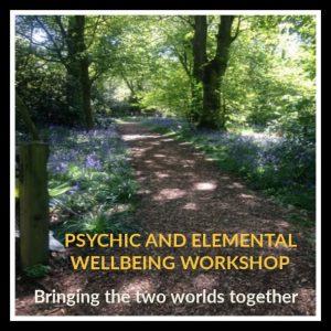 Psychic and Elemental Wellbeing Workshop