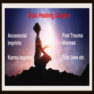 Soul Healing Ancestral Workshop
