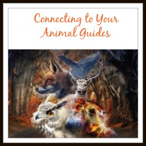 Connecting to your Spirit Animal